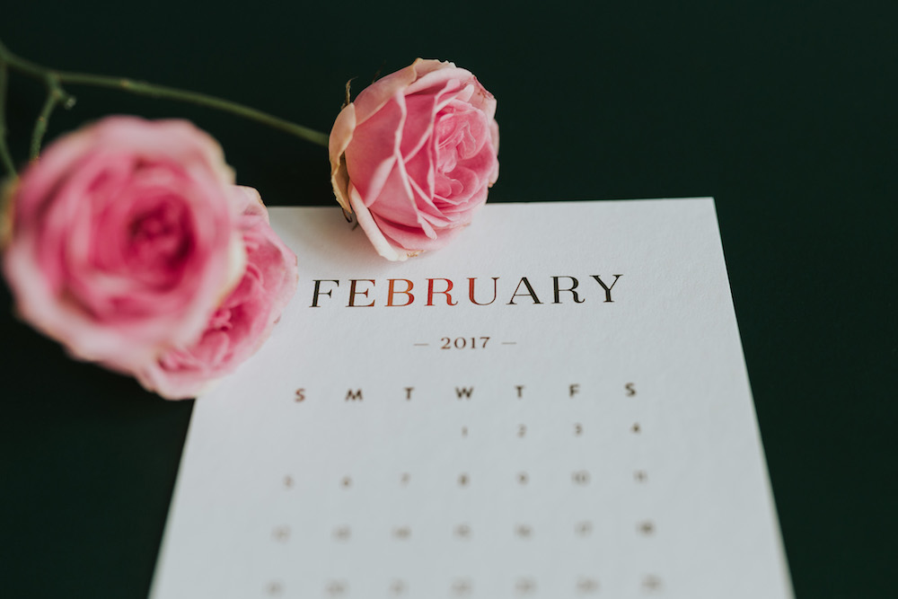 list-of-stock-image-sites-february-with-pink-flowers